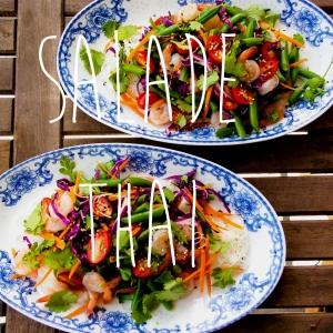 Vivre pour manger salade_thai